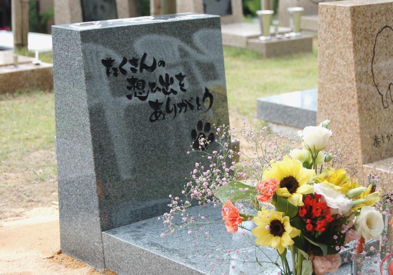 ペットの葬儀やお墓作りの流れとは!?お墓参りで『ペットロス』を癒そう!